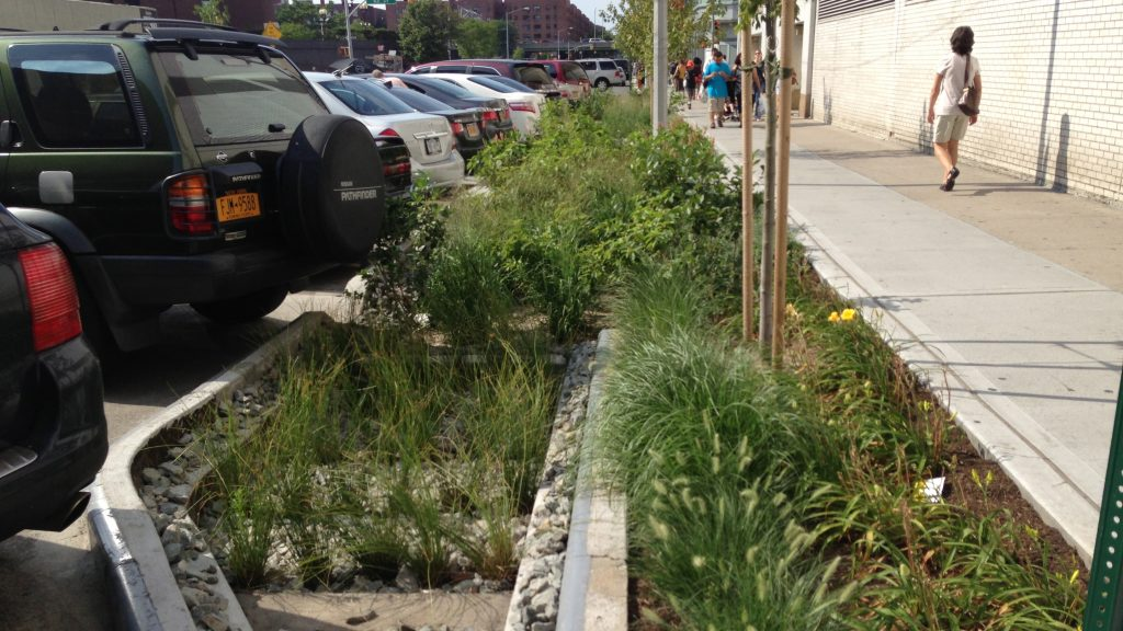 Bioswale in Queens by NYC Greenstreets