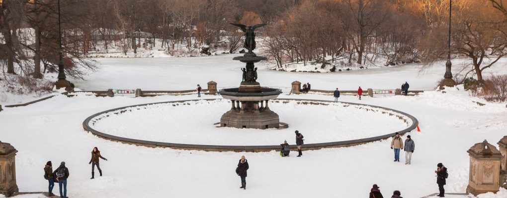 Central Park in the snow. Courtesy of Mayor's Office of Photography.