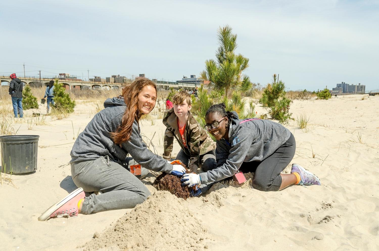 ShoreCorps members - beach restoration project