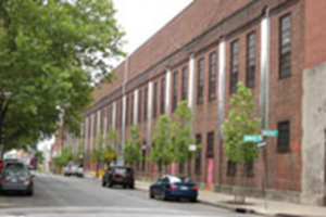 Street trees on residential block. Source: NYC Parks.