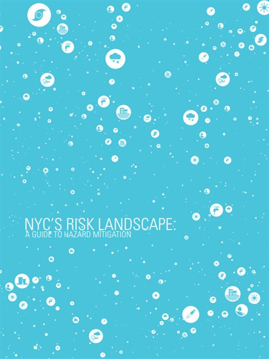 NYC's Risk Landscape: A Guide to Hazard Mitigation